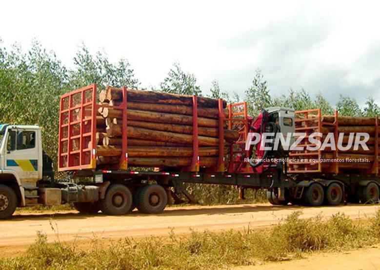 Grua Florestal 12Z em caminhão